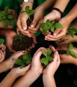 Samedi ludique nature & environnement