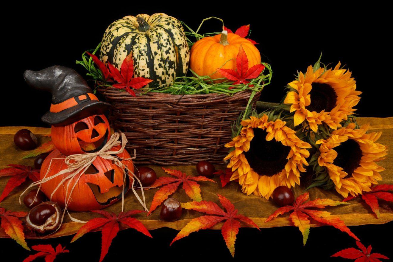 autumn-21499_1920