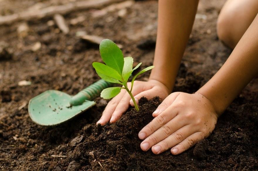 7793728745_le-jardinage-peut-il-aider-a-nous-soigner