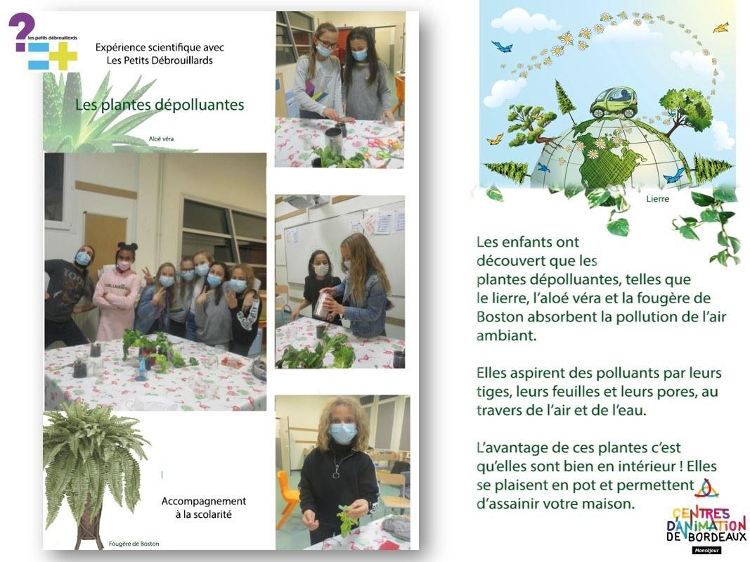 photos dépolluantes CLAS Elementaires